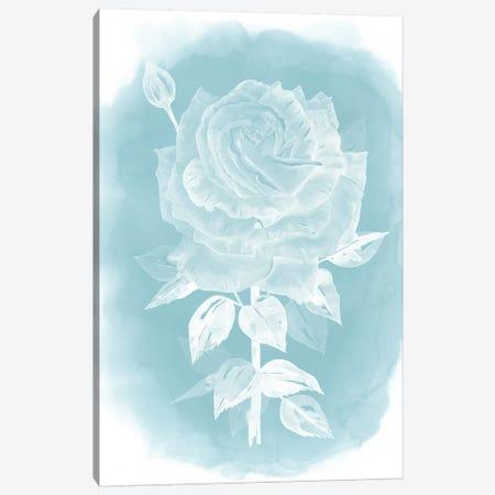 Ghost Rose II Canvas Print #POP210} by Grace Popp Canvas Art Print