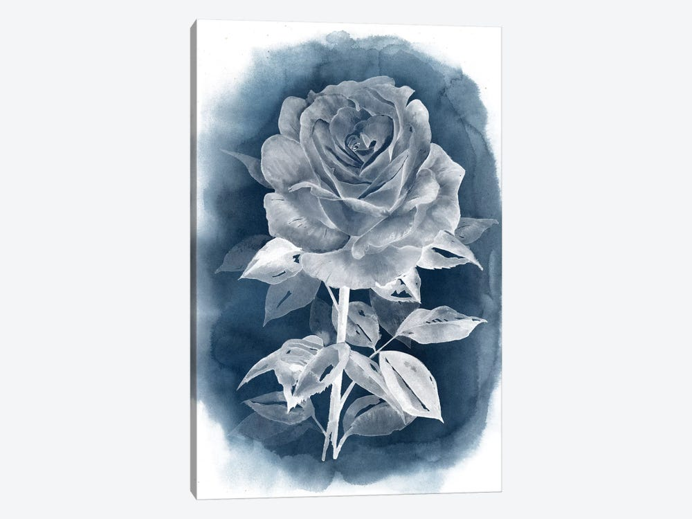 Ghost Rose III by Grace Popp 1-piece Canvas Art Print