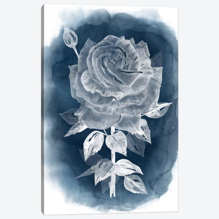 Ghost Rose IV Canvas Print #POP212} by Grace Popp Canvas Print
