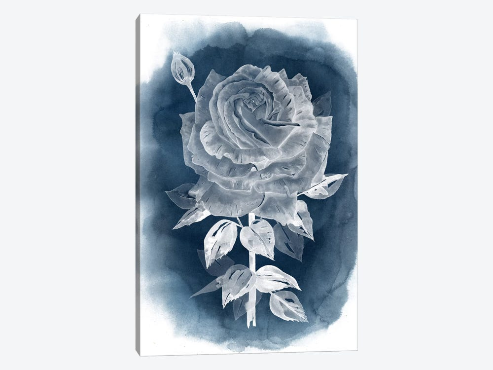 Ghost Rose IV by Grace Popp 1-piece Canvas Art