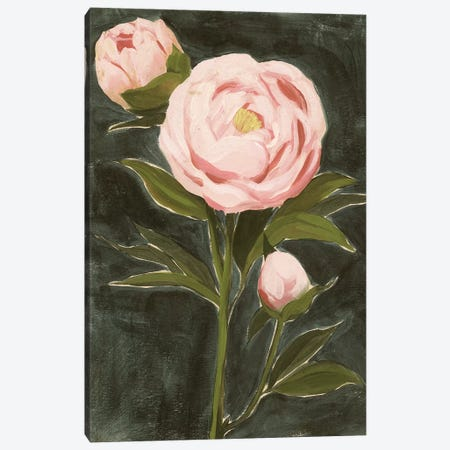 Vintage Peonies I Canvas Print #POP2131} by Grace Popp Canvas Print