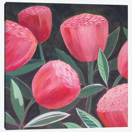 Blush Blossoms I Canvas Print #POP2146} by Grace Popp Canvas Print