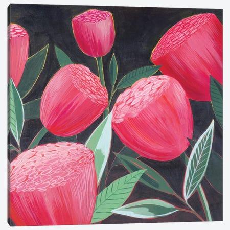 Blush Blossoms II Canvas Print #POP2147} by Grace Popp Art Print