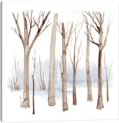 Cypress Sounds I Canvas Art Print
