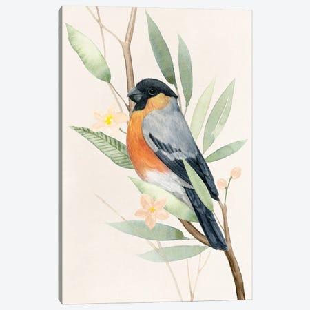 Tree Toppers I Canvas Print #POP2184} by Grace Popp Art Print