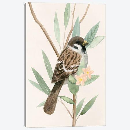 Tree Toppers II Canvas Print #POP2185} by Grace Popp Art Print