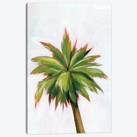 Palm Glow I Canvas Print #POP2204} by Grace Popp Canvas Artwork