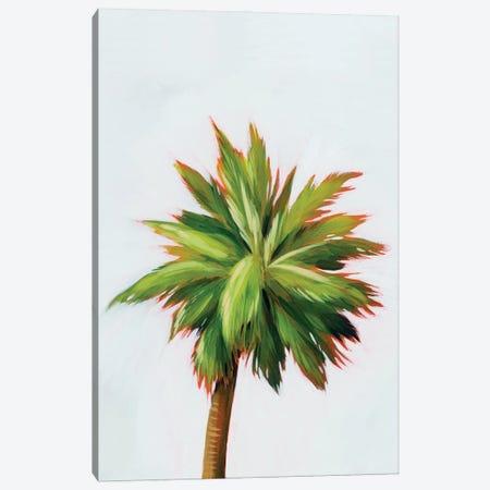 Palm Glow II Canvas Print #POP2205} by Grace Popp Canvas Art