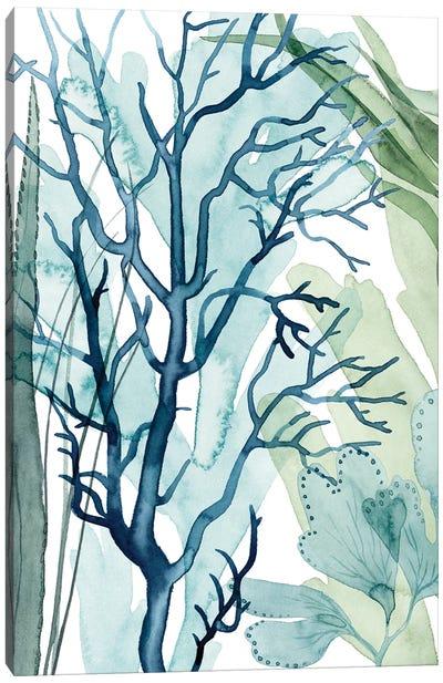 Sea Leaves I Canvas Art Print