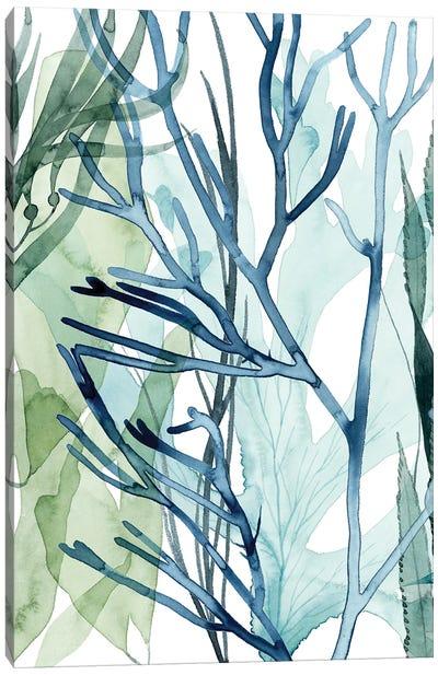 Sea Leaves II Canvas Art Print