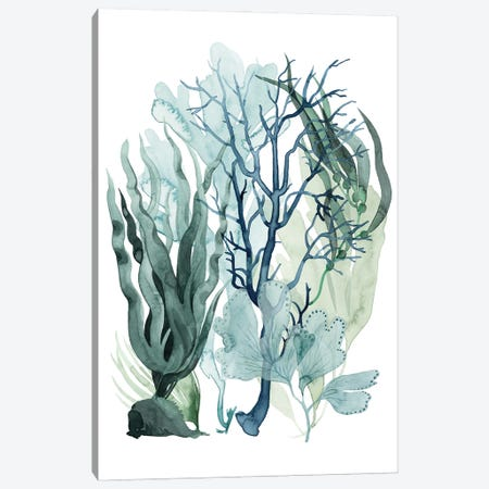 Sea Leaves IV Canvas Print #POP2209} by Grace Popp Art Print