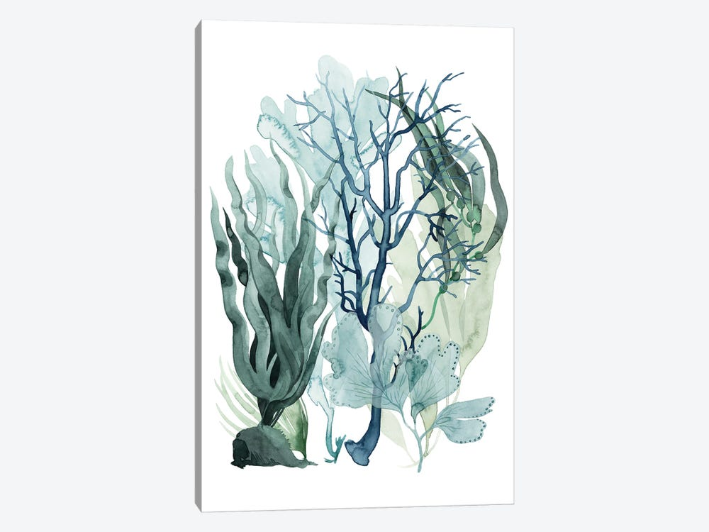 Sea Leaves IV by Grace Popp 1-piece Canvas Art Print