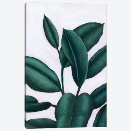 Verdant Ficus I Canvas Print #POP2220} by Grace Popp Canvas Print