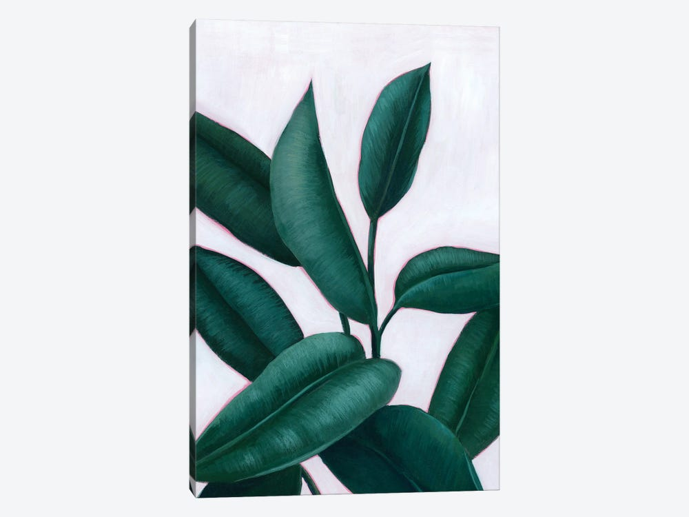 Verdant Ficus II by Grace Popp 1-piece Canvas Art Print