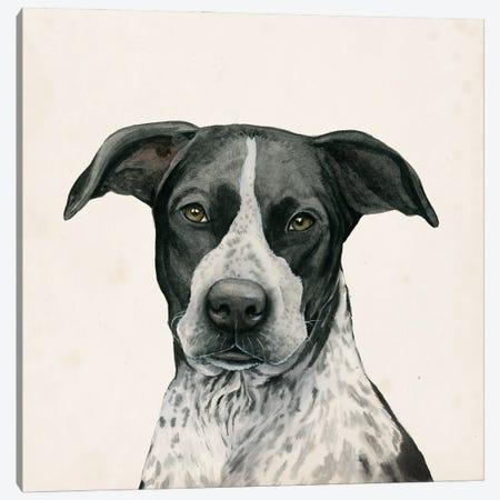 Best Bud IV Canvas Print #POP2231} by Grace Popp Canvas Art