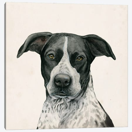 Best Bud IV Canvas Print #POP2231} by Grace Popp Canvas Art