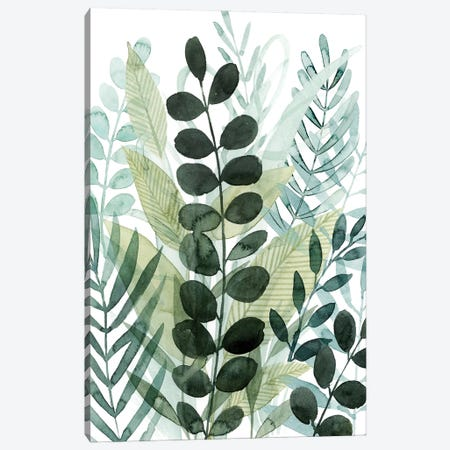 Forest Forage I 3-Piece Canvas #POP2234} by Grace Popp Canvas Art Print