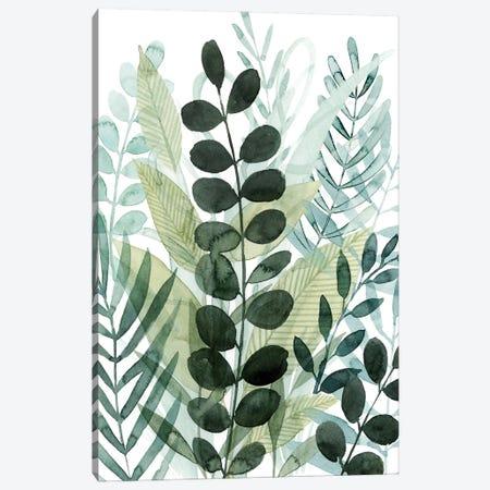 Forest Forage I Canvas Print #POP2234} by Grace Popp Canvas Art Print