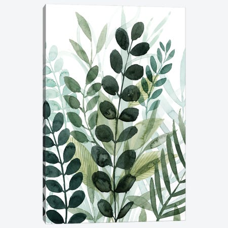 Forest Forage II Canvas Print #POP2235} by Grace Popp Canvas Print
