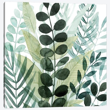 Forest Forage III Canvas Print #POP2236} by Grace Popp Canvas Art Print