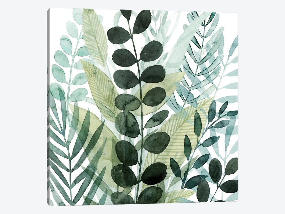 Forest Forage III by Grace Popp 1-piece Canvas Print