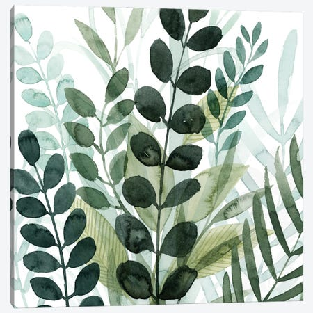 Forest Forage IV 3-Piece Canvas #POP2237} by Grace Popp Art Print
