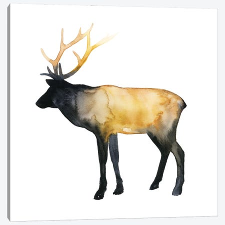 Elk Aglow I Canvas Print #POP2257} by Grace Popp Canvas Print