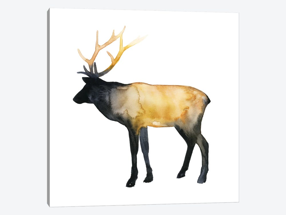 Elk Aglow I by Grace Popp 1-piece Canvas Artwork