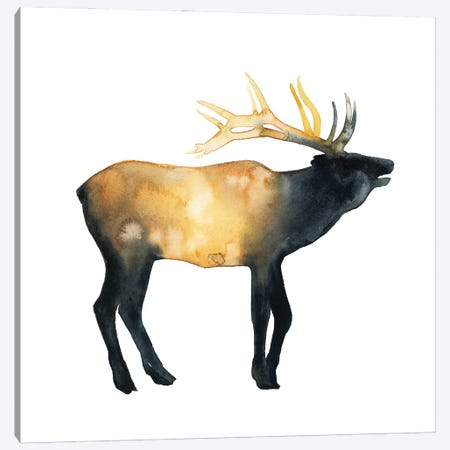 Elk Aglow II Canvas Print #POP2258} by Grace Popp Canvas Art