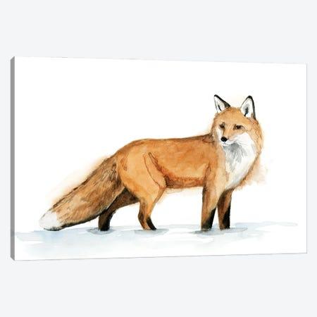 Snow Fox I Canvas Print #POP2263} by Grace Popp Canvas Art Print