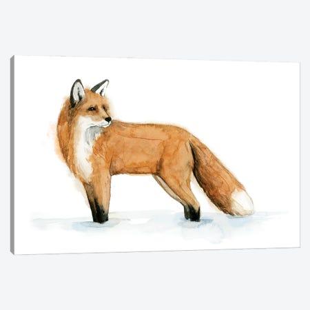 Snow Fox II Canvas Print #POP2264} by Grace Popp Canvas Art