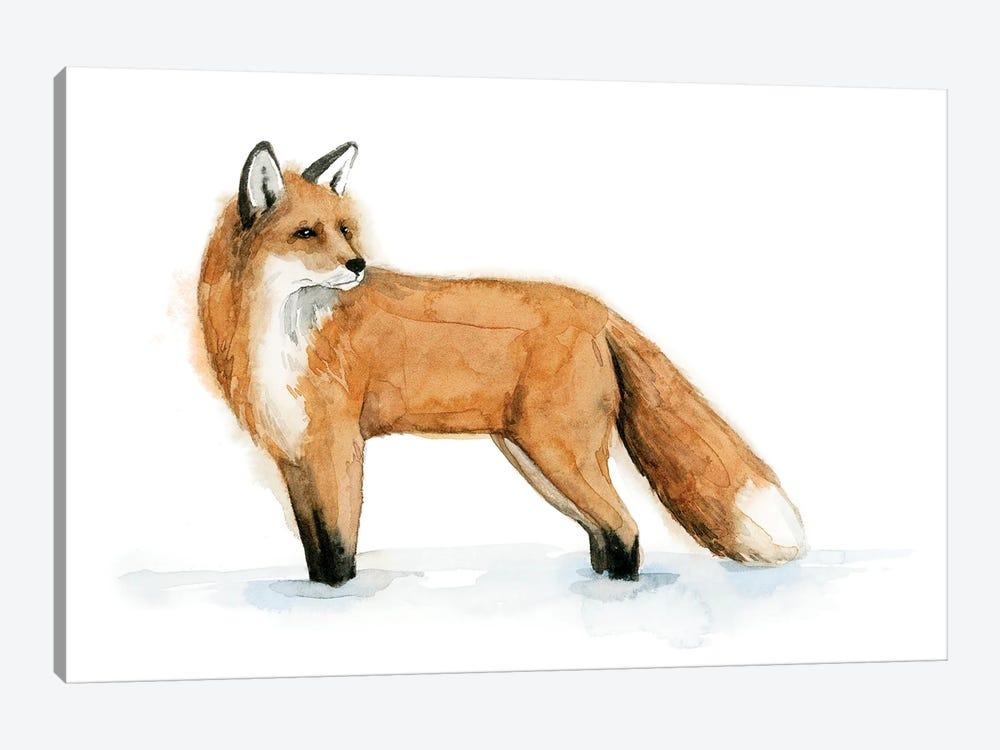 Snow Fox II by Grace Popp 1-piece Canvas Wall Art
