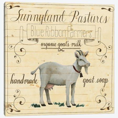 Animal Farm Collection IV Canvas Print #POP2270} by Grace Popp Canvas Artwork
