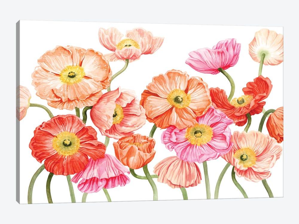 Bright Poppies III by Grace Popp 1-piece Canvas Art Print