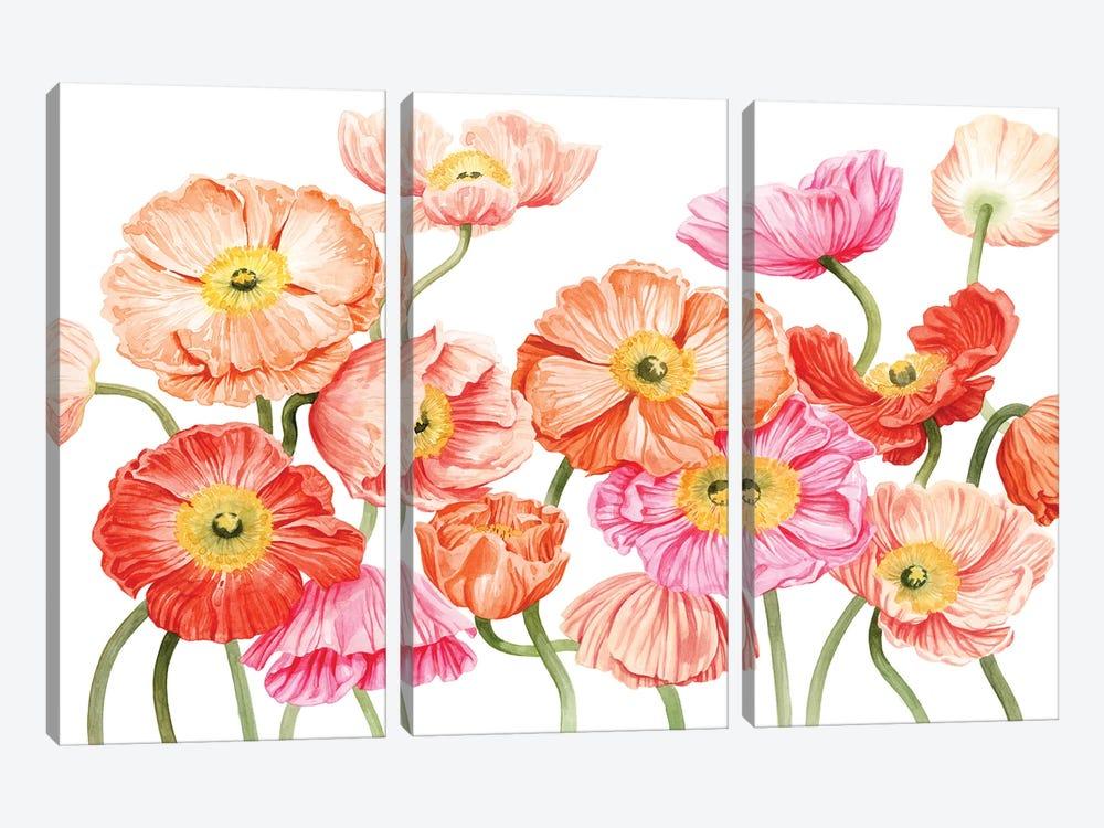 Bright Poppies III by Grace Popp 3-piece Art Print