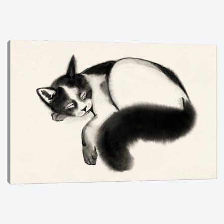 Cat Laze I Canvas Print #POP2275} by Grace Popp Canvas Art Print