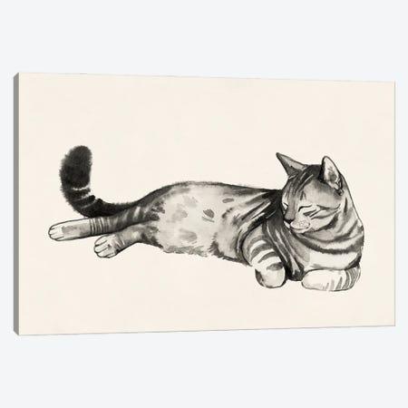 Cat Laze II Canvas Print #POP2276} by Grace Popp Art Print