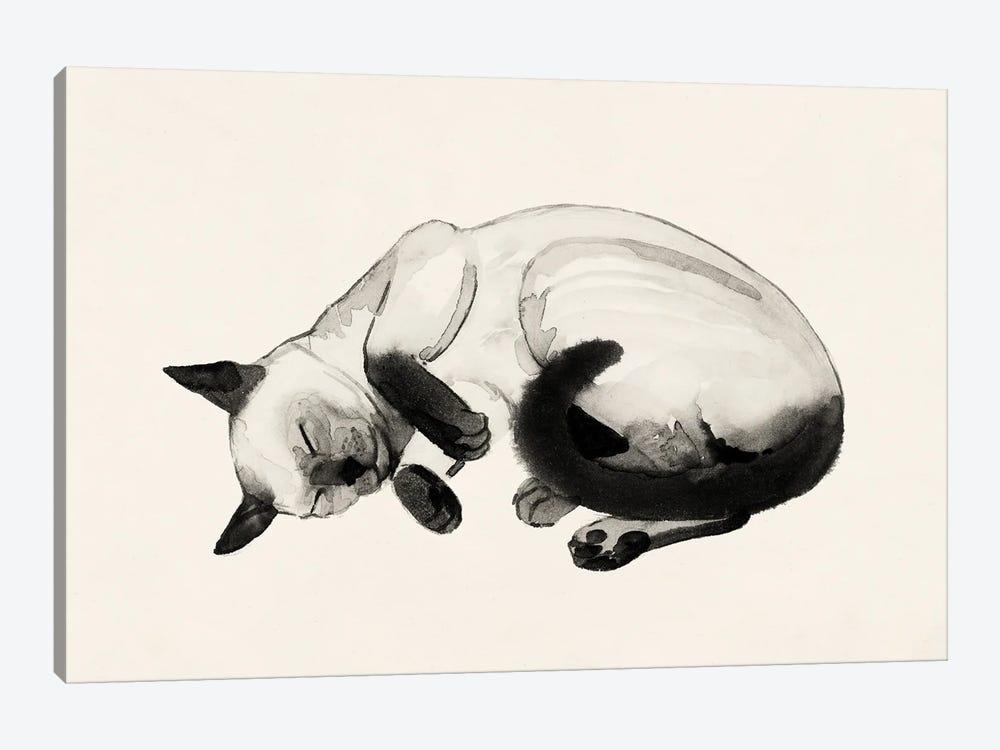 Cat Laze III by Grace Popp 1-piece Canvas Art