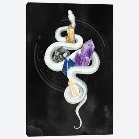 Crystalline Serpent II Canvas Print #POP2281} by Grace Popp Canvas Art Print