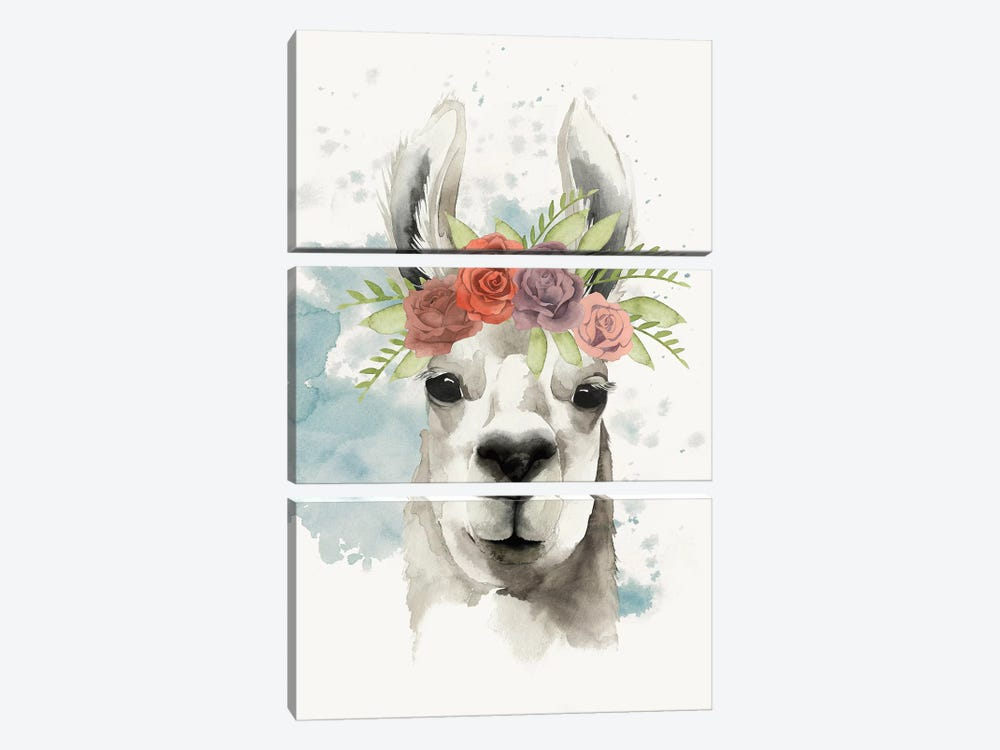 Llama Flora I by Grace Popp 3-piece Canvas Print