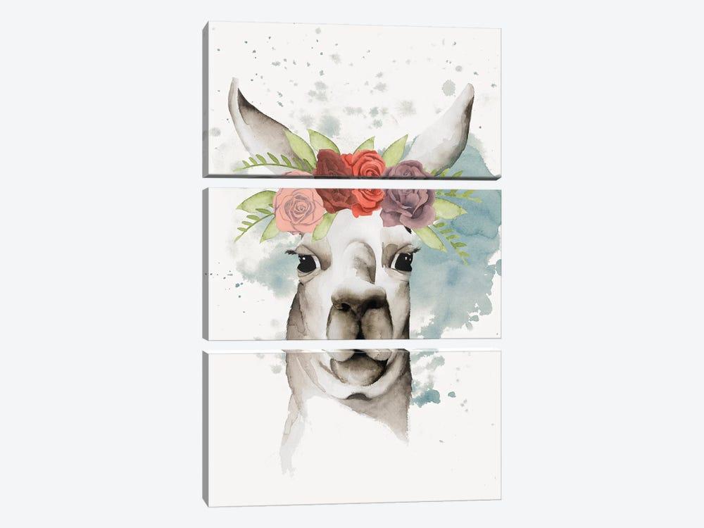 Llama Flora II by Grace Popp 3-piece Canvas Wall Art