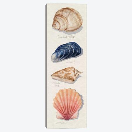 Shore Things II Canvas Print #POP2406} by Grace Popp Canvas Art