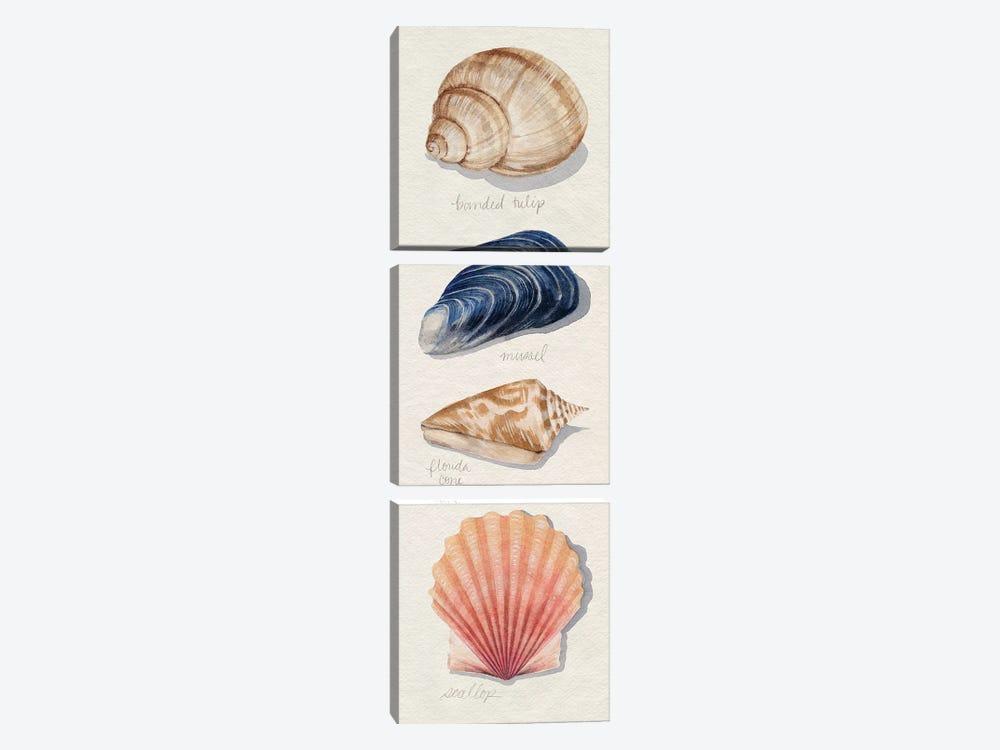Shore Things II by Grace Popp 3-piece Canvas Art