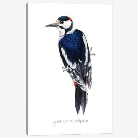 Watercolor Woodpecker II Canvas Print #POP2433} by Grace Popp Canvas Art