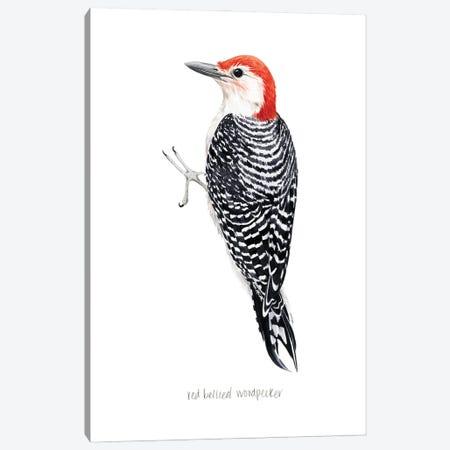 Watercolor Woodpecker III Canvas Print #POP2434} by Grace Popp Art Print