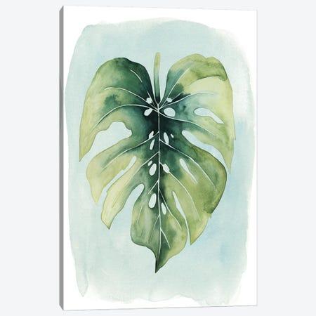 Paradise Palm Leaves I Canvas Print #POP243} by Grace Popp Canvas Wall Art