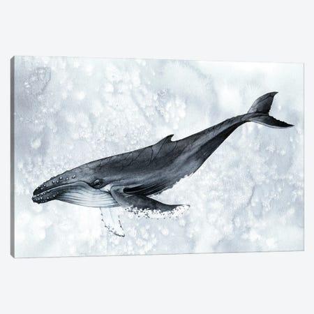 Deep Diver II Canvas Print #POP2444} by Grace Popp Canvas Wall Art