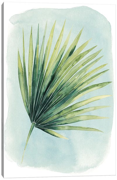 Paradise Palm Leaves II Canvas Print #POP244