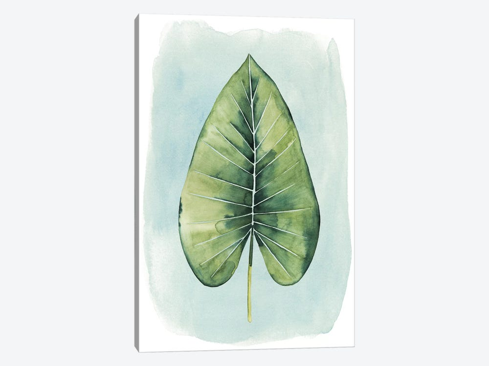 Paradise Palm Leaves III by Grace Popp 1-piece Canvas Wall Art