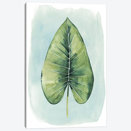 Paradise Palm Leaves III Canvas Print #POP245} by Grace Popp Canvas Print